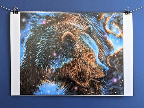 'Spirit Bear' - Print (13x19)