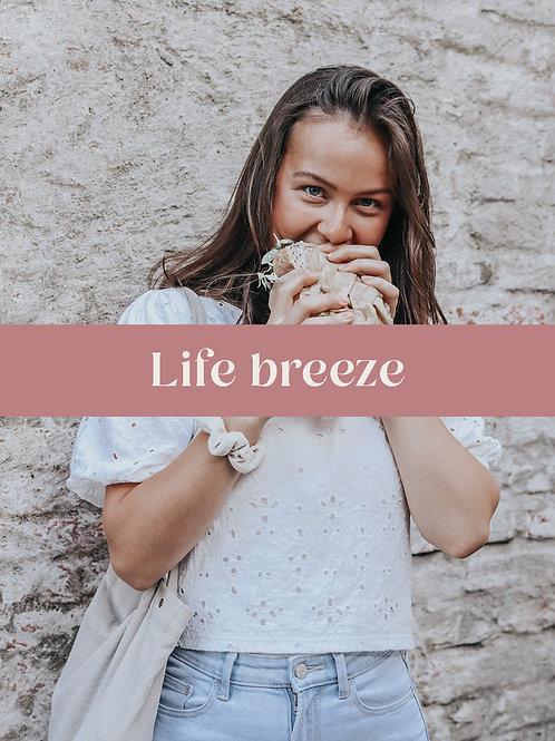 Life breeze P1
