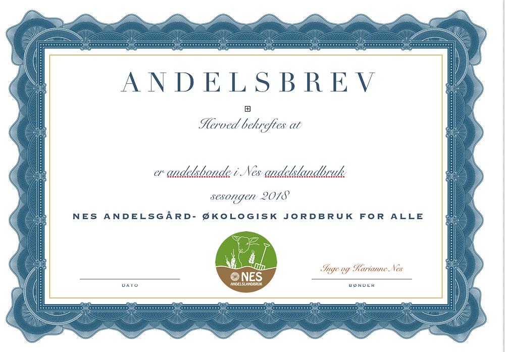 Andelsbrev