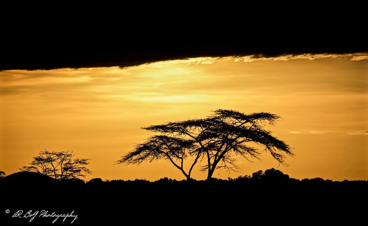 Sunset in Kenya.jpg