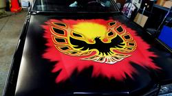 Custom Firebird hood wrap