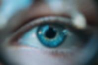 Screen Shot 2020-02-08 at 2.48.39 AM.png