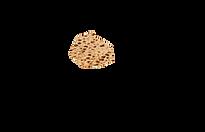 habad_loubavitch_marseille_pessah_matza