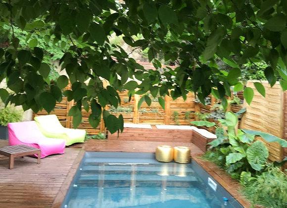 chill around swimming-pool