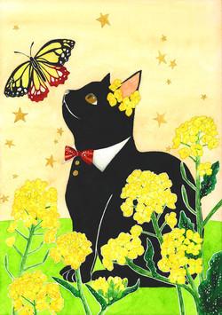 黒猫と菜の花_rgb