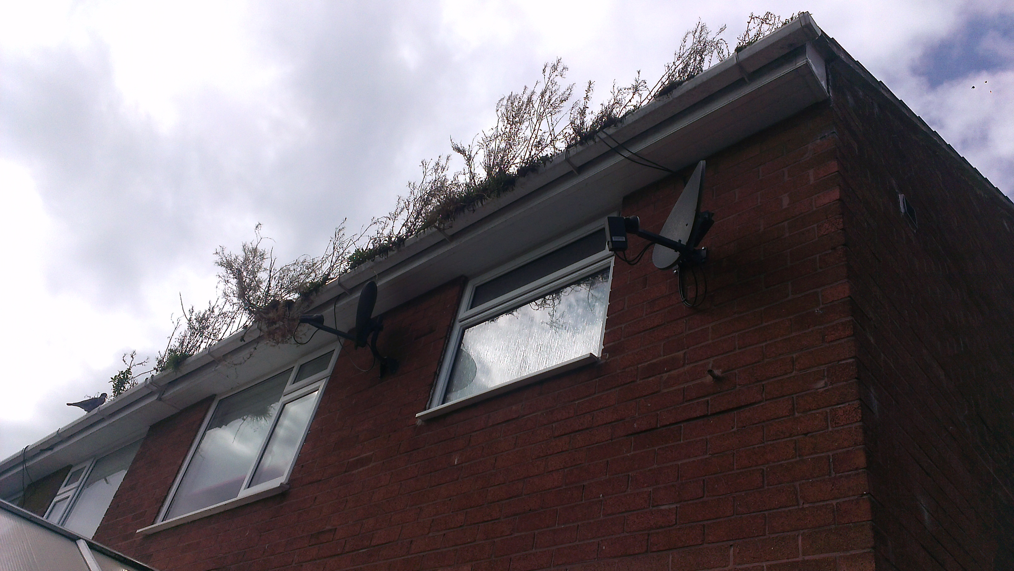 Gutter cleaning sheffield