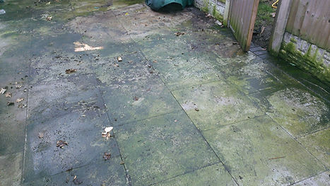 drivewaycleaning- Before