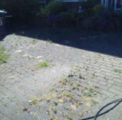 star jet wash- driveway cleaning