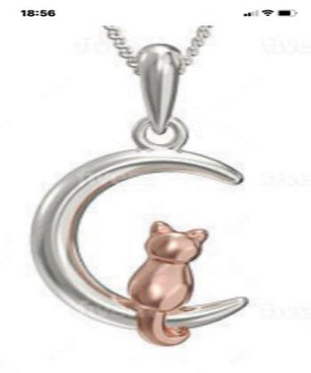 Sterling Silver  and  9ct Rose Gold Cat in the MoonPendant
