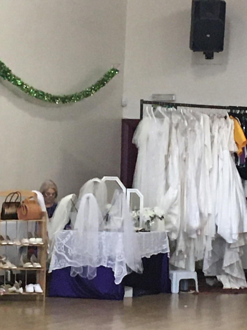 Wedding gowns and viels ©