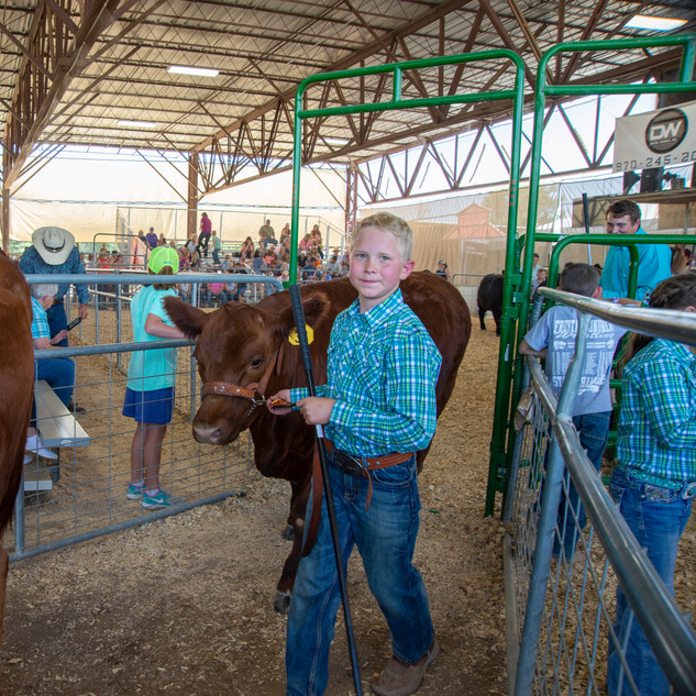 Fairgrounds day_2_4H_events-19-2.jpg