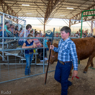 Fairgrounds day_2_4H_events-17-2.jpg