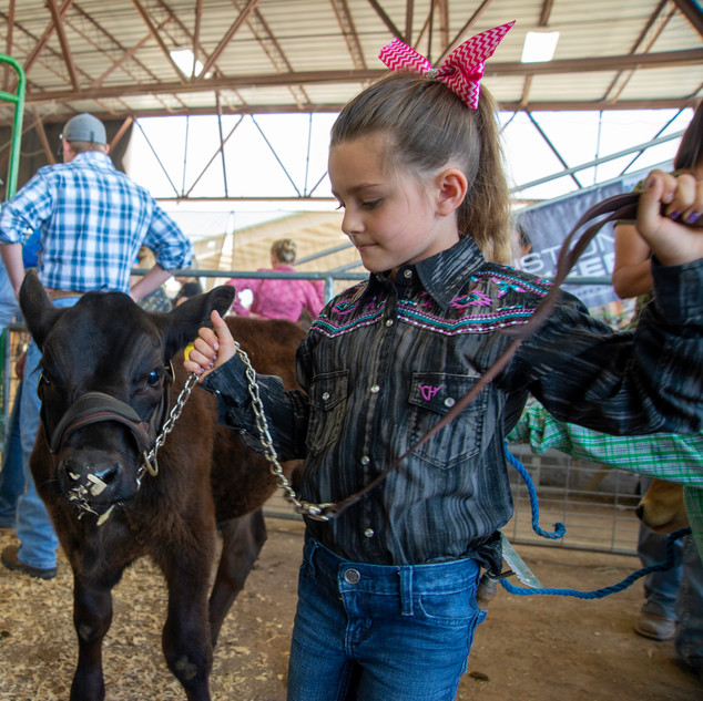 Fairgrounds day_2_4H_events-51-2.jpg