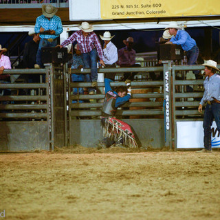 Fairgrounds day_2_rodeo-885.jpg