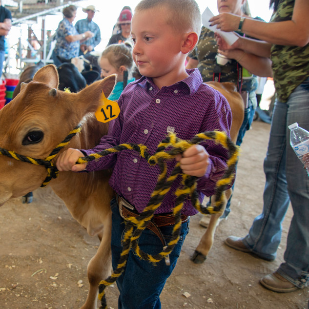 Fairgrounds day_2_4H_events-27-2.jpg