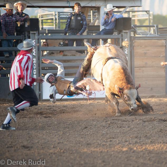 Fairgrounds day_2_rodeo-512.jpg