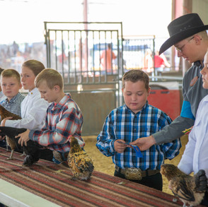 Fairgrounds day_2_4H_events-176.jpg