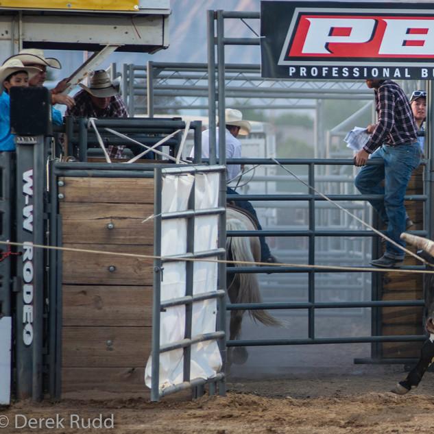 Fairgrounds day_2_rodeo-682.jpg