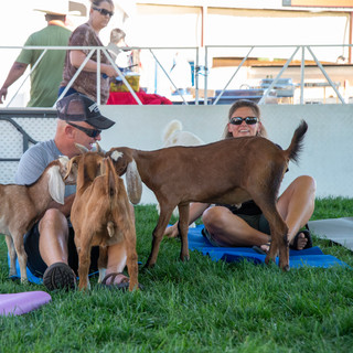 Fairgrounds day_3_others-49-3.jpg