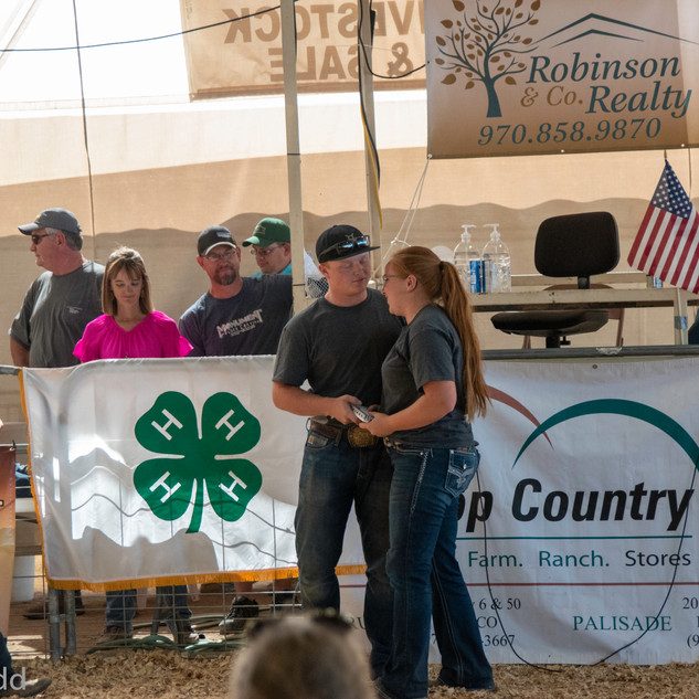 Fairgrounds day_3_others-24-4.jpg