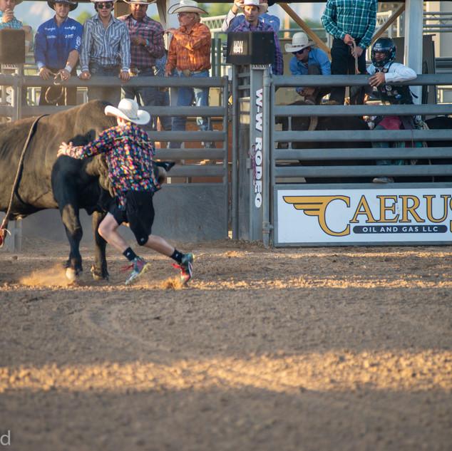 Fairgrounds day_2_rodeo-444.jpg