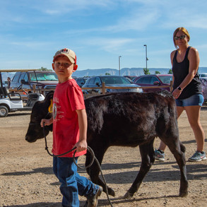 Fairgrounds day_2_4H_events-87.jpg