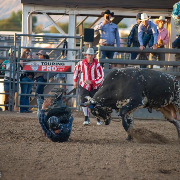 Fairgrounds day_2_rodeo-584.jpg