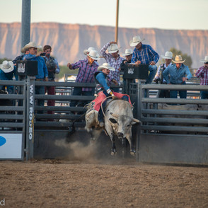Fairgrounds day_2_rodeo-620.jpg