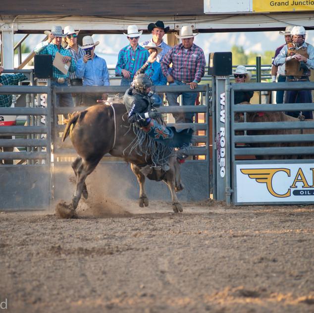 Fairgrounds day_2_rodeo-504.jpg