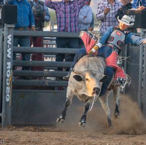 Fairgrounds day_2_rodeo-621.jpg