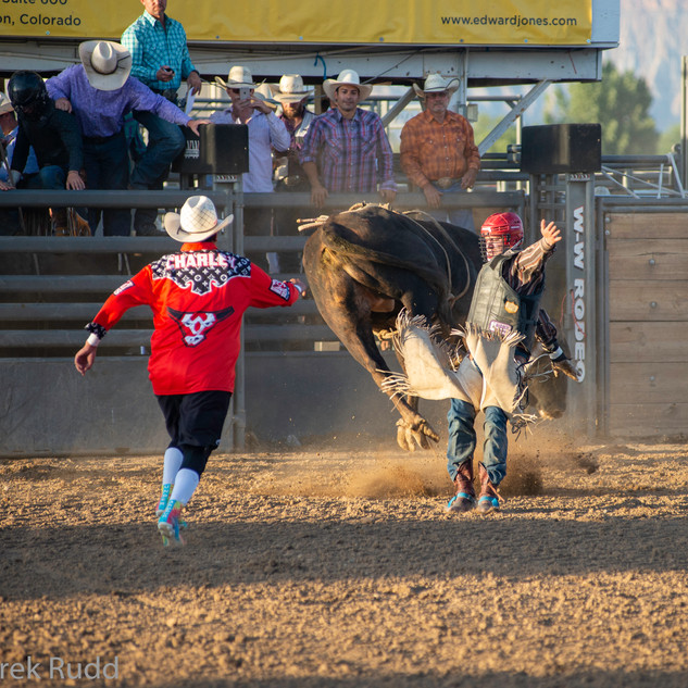 Fairgrounds day_2_rodeo-415.jpg