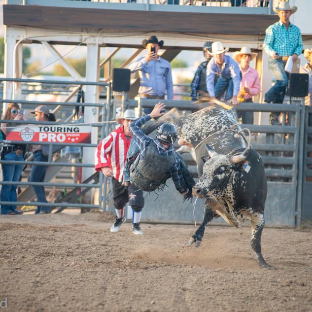 Fairgrounds day_2_rodeo-583.jpg