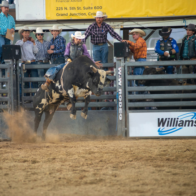 Fairgrounds day_2_rodeo-727.jpg
