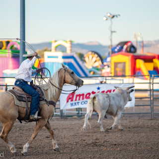 Fairgrounds day_2_rodeo-609.jpg