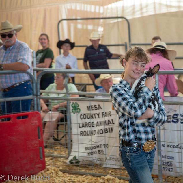 Fairgrounds day_4-240.jpg