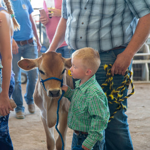 Fairgrounds day_2_4H_events-46-2.jpg