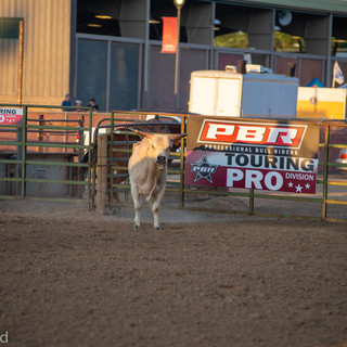 Fairgrounds day_2_rodeo-611.jpg