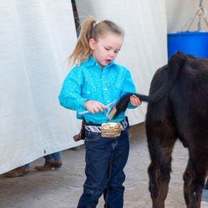 Fairgrounds day_2_4H_events-207.jpg