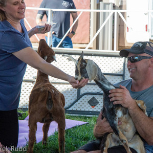Fairgrounds day_3_others-100-3.jpg