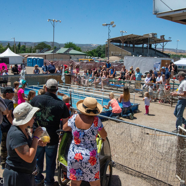 Fairgrounds day_3_others-166.jpg