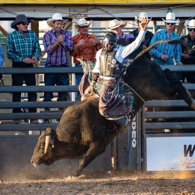 Fairgrounds day_2_rodeo-452.jpg