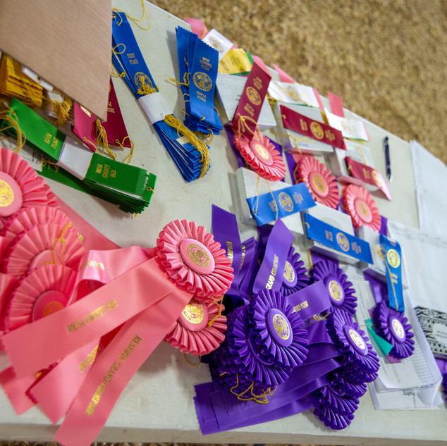 Fairgrounds day_2_4H_events-3.jpg