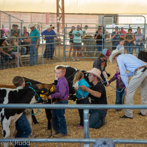 Fairgrounds day_2_4H_events-47-2.jpg