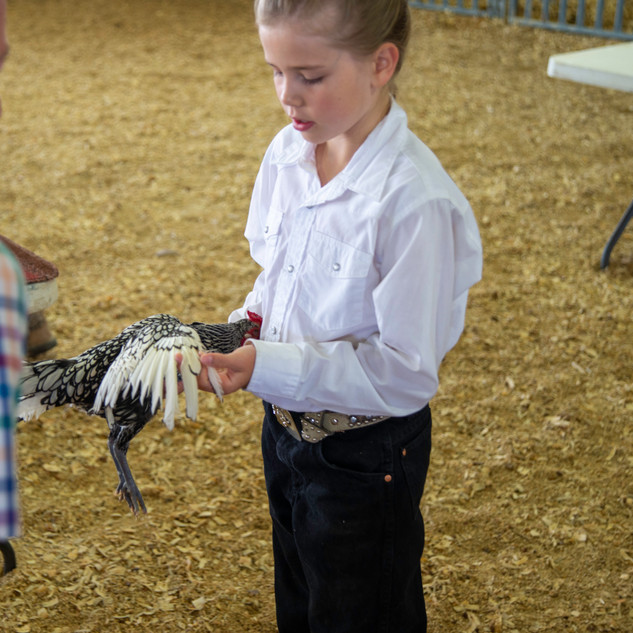 Fairgrounds day_2_4H_events-54.jpg