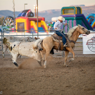 Fairgrounds day_2_rodeo-658.jpg