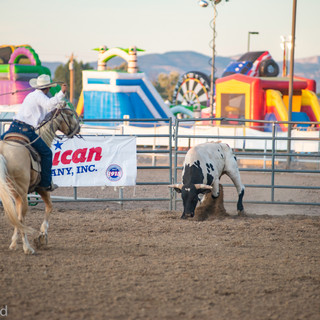 Fairgrounds day_2_rodeo-640.jpg