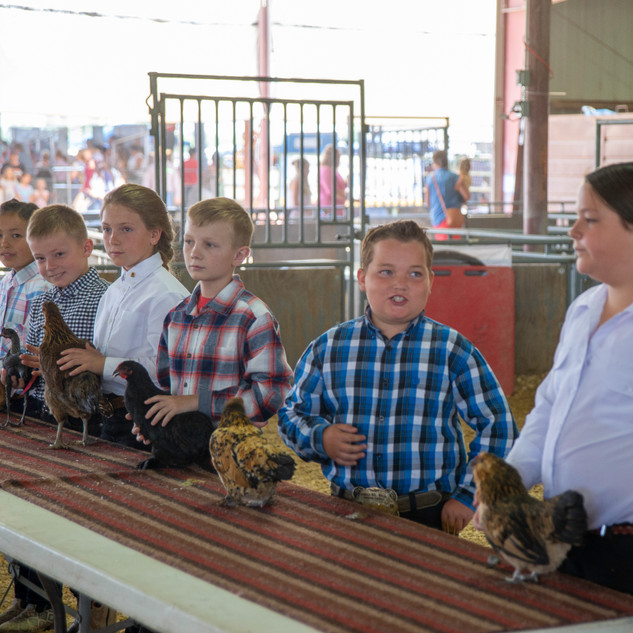 Fairgrounds day_2_4H_events-181.jpg