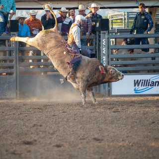 Fairgrounds day_2_rodeo-506.jpg