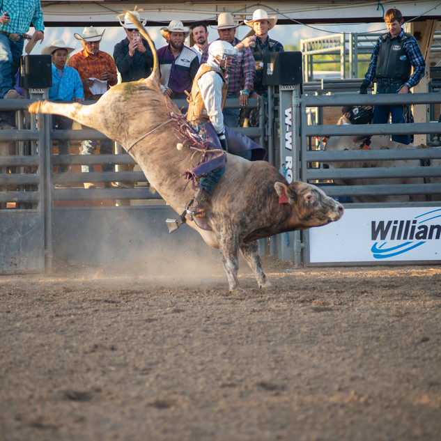 Fairgrounds day_2_rodeo-506.jpg