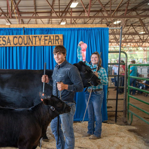 Fairgrounds day_2_4H_events-168.jpg